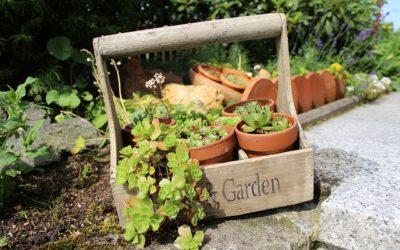 Safe Gardening Tips